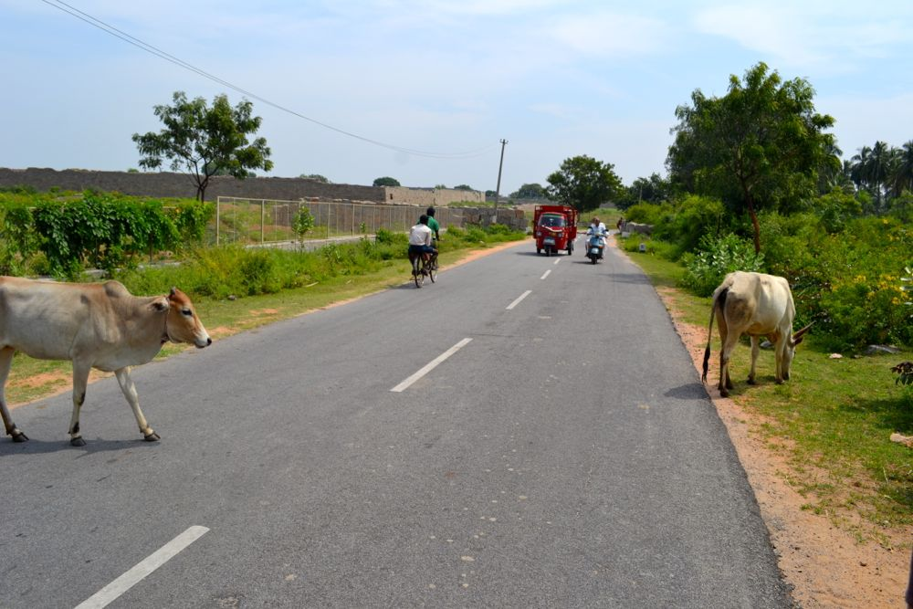 India trasporti