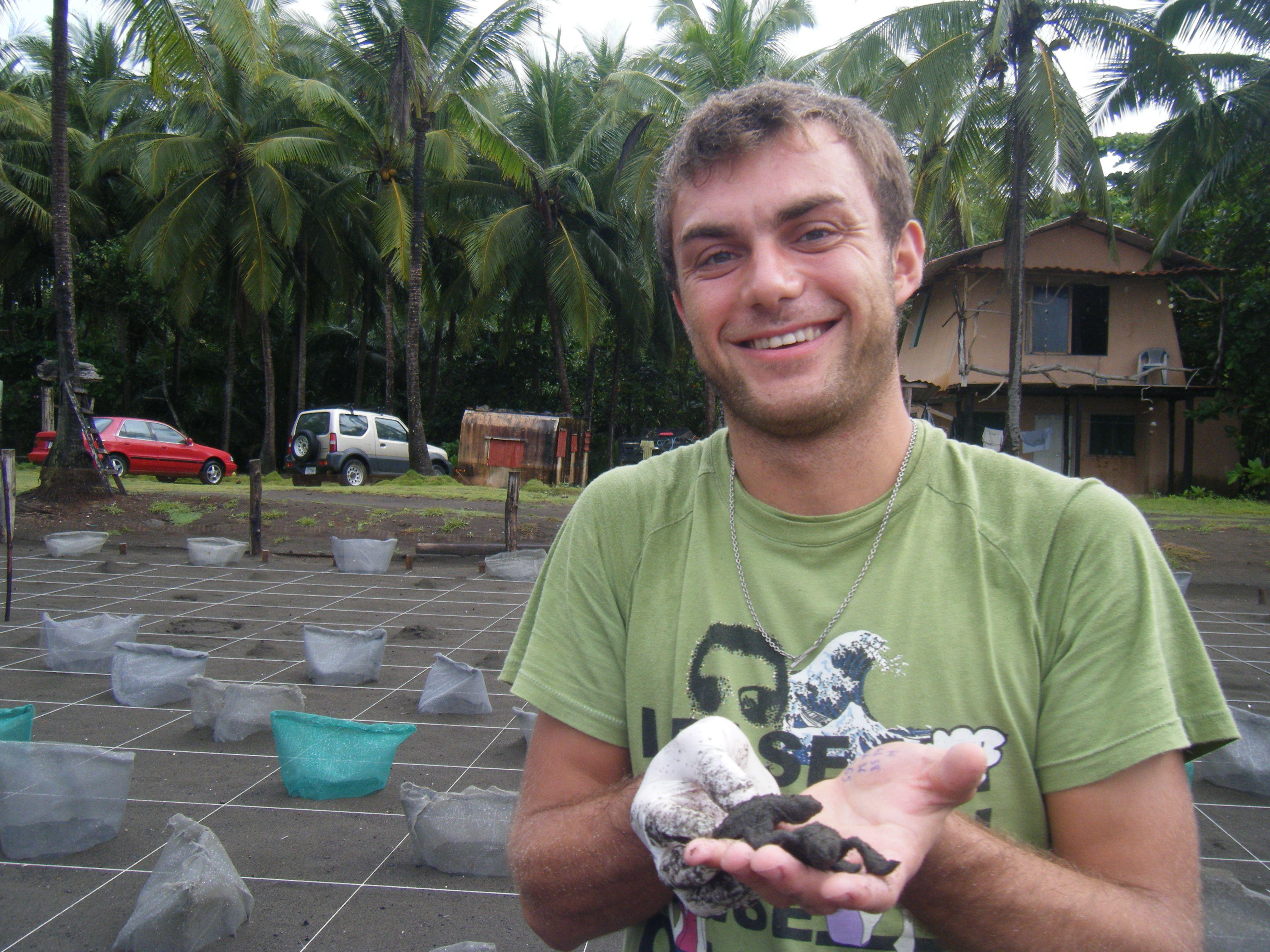Costarica 4 rifugio vida silvestre volontariato con le for I gatti mangiano le tartarughe