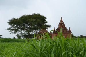 Bagan emozioni e considerazioni