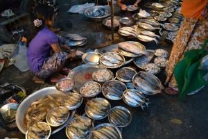 Mercato di pesce sulla strada
