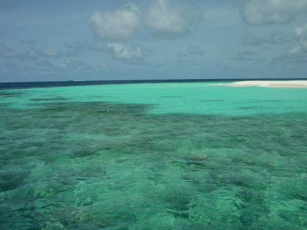maldive backpacker