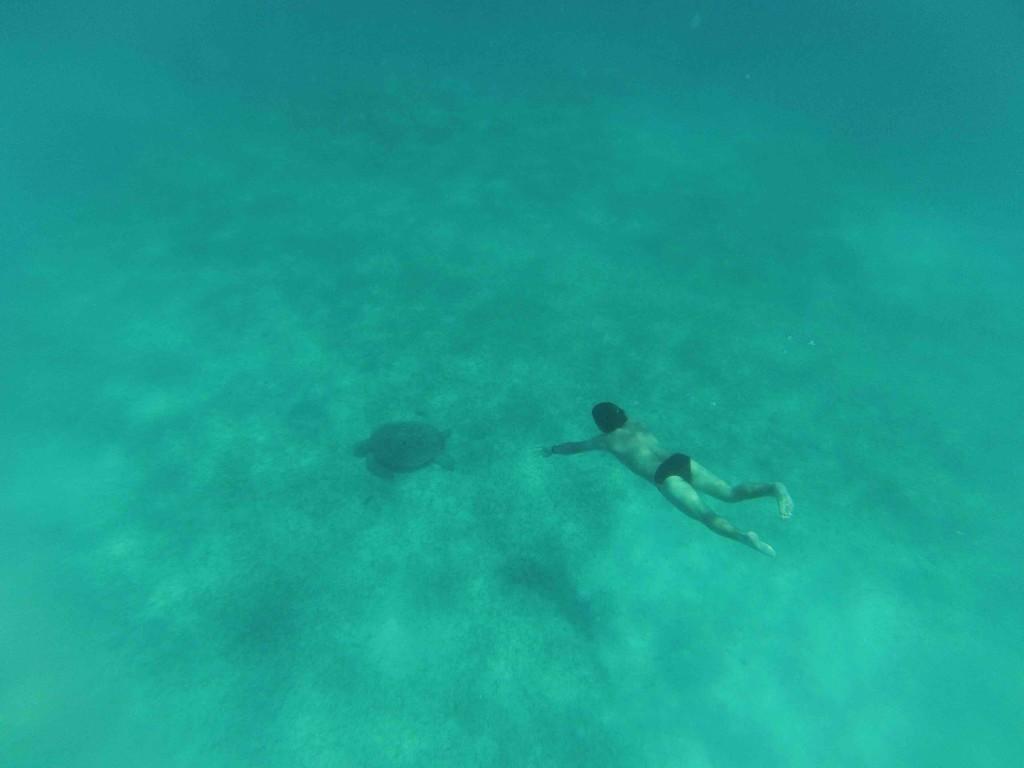 perhentian snorkeling