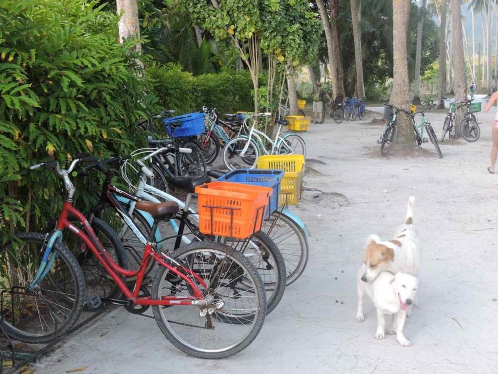 bici-seychelles
