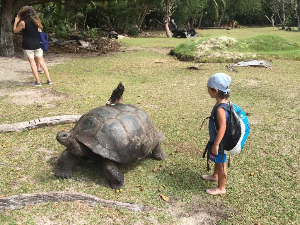 seychelles-viaggio-bambini