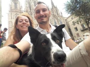 tripdoggy-viaggi