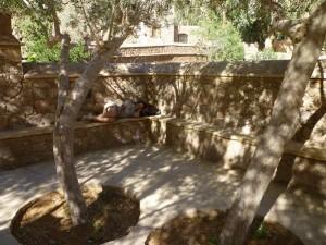 Riposo al monastero di Santa Caterina