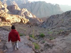 La discesa del Monte Sinai