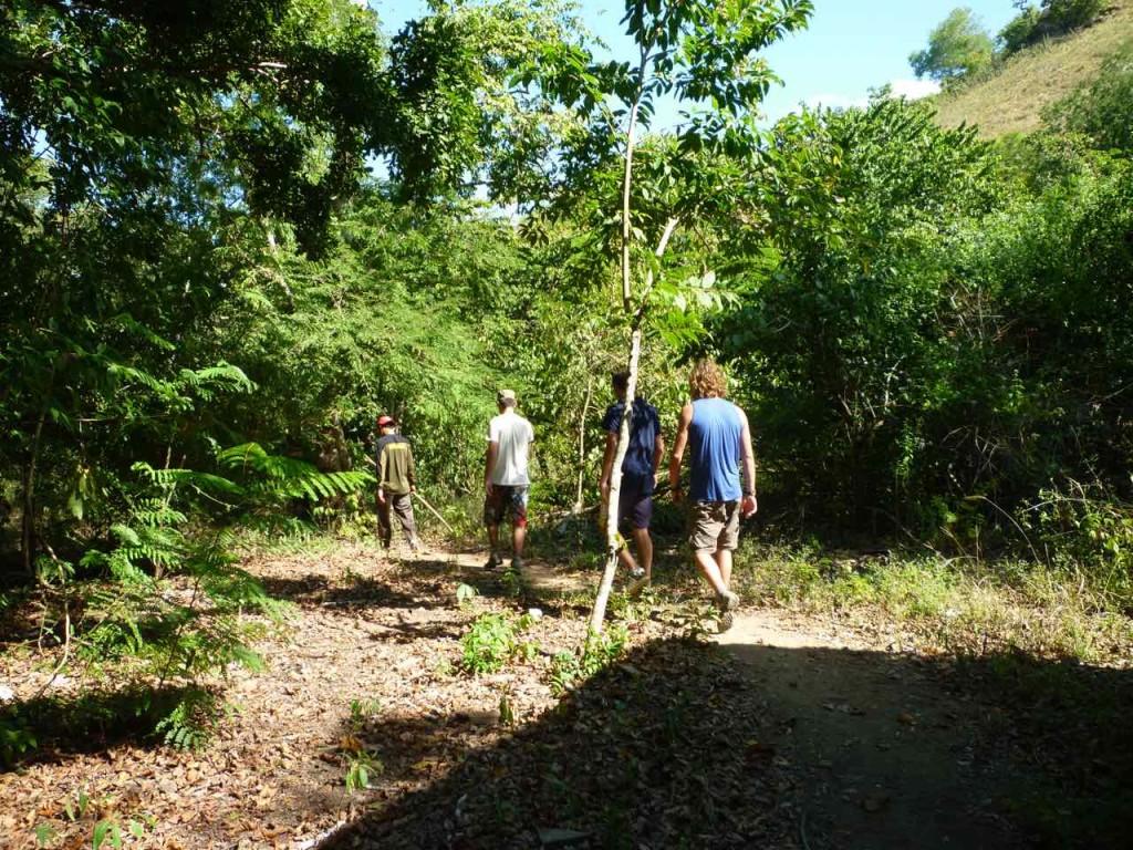 Trekking sull'isola di Rinca