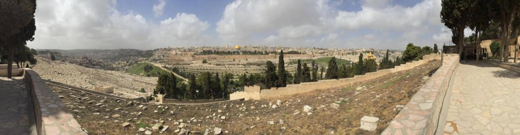 Israele Terra di latte e miele