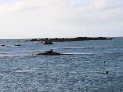 Spiaggia di Ytri Tunga