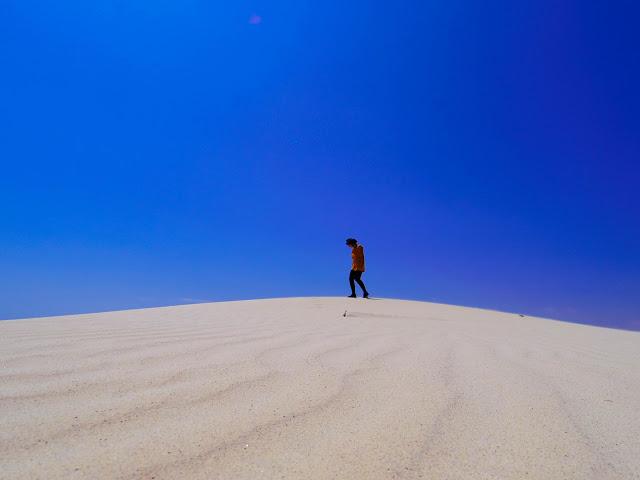 Il Mondo Capovolto a Socotra