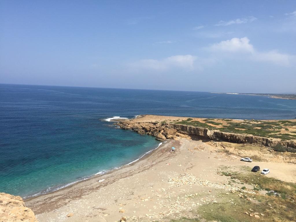 Cipro perche'